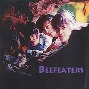 beefeaters: beefeaters