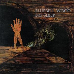 big sleep: bluebell wood