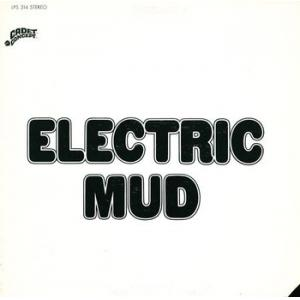 muddy waters: electric mud