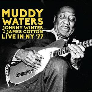 muddy waters, johnny winter & james cotton: live in ny '77