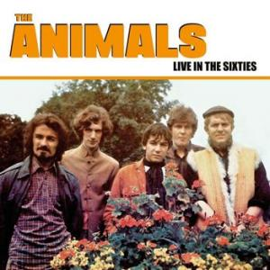 the animals: live in the sixties (coloured)