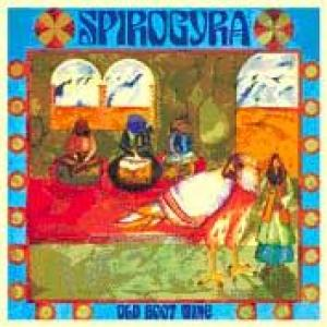 spirogyra: old boot wine