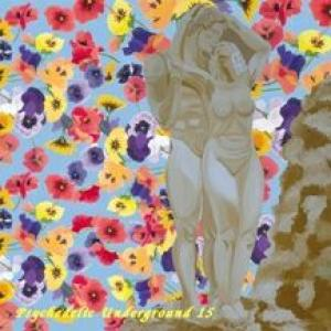 various: psychedelic underground vol. 15