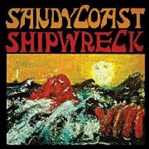 sandy coast: shipwreck
