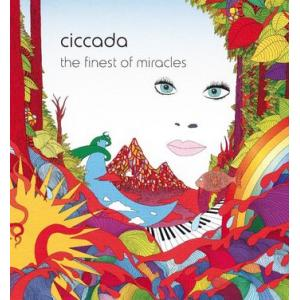 ciccada: the finest of miracles