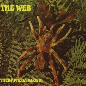 web: theraphosa blondi