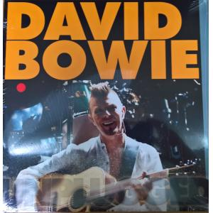 david bowie: unplugged